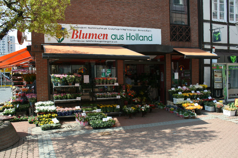 Telefon 05171 588079 e mail info blumen peine de internet www blumen